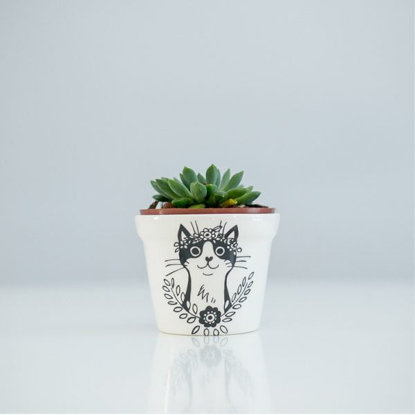 Buy Planters Online - Cat handcrafted ceramic planter online - Sugar and Vice - South Africa