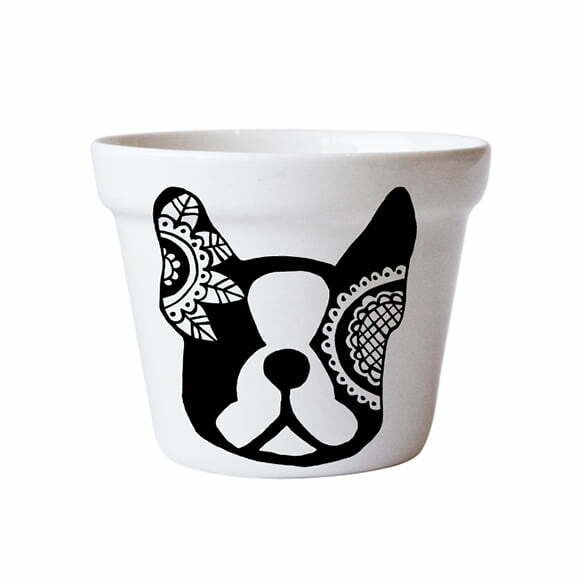 Planters for Sale - Boston terrier ceramic planter online - Sugar and Vice - Cape Town