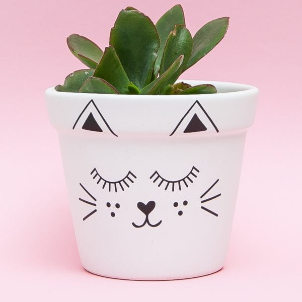 Illustrated Cute Scandi Cat Planter Online - Sugar and Vice2