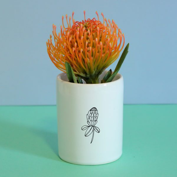 Illustrated Protea Illustration Jar, Mugs and Planter Online - Sugar and Vice - 2000 x 2000px3