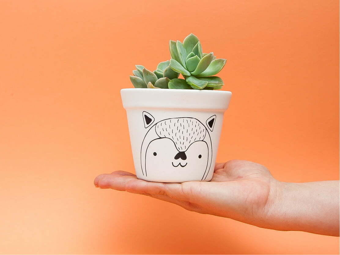 Container Gardening Sugar and Vice Planters Online2