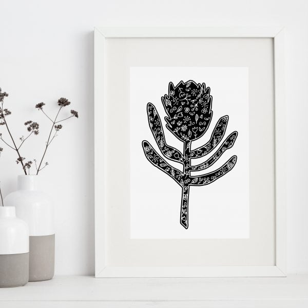 Framed-wall-art-print-Protea-Sugar-and-Vice-Cape-Town