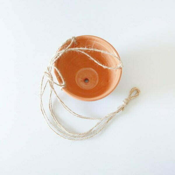 Ceramic Hanging Planter Online - Cape Town - Sugar and Vice1